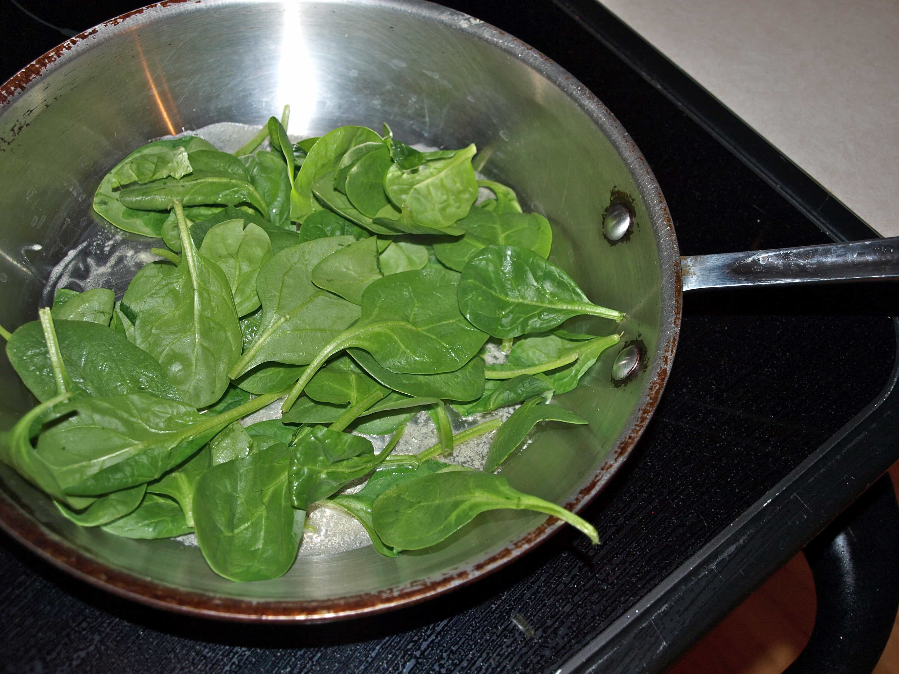 Hot Lunch in a Hurry:  Spinach-Artichoke Panini