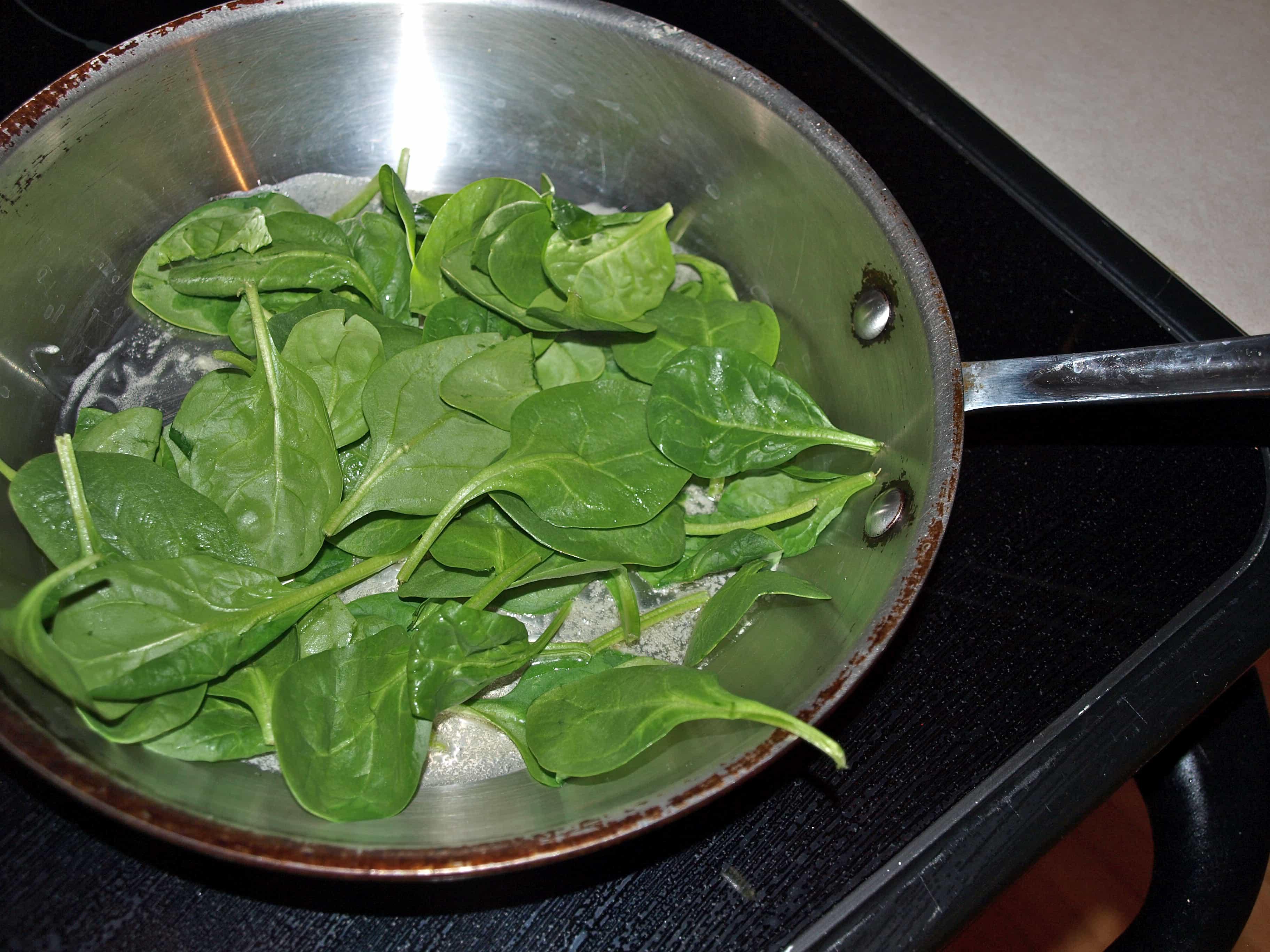 Hot Lunch in a Hurry:  Spinach-Artichoke Panini