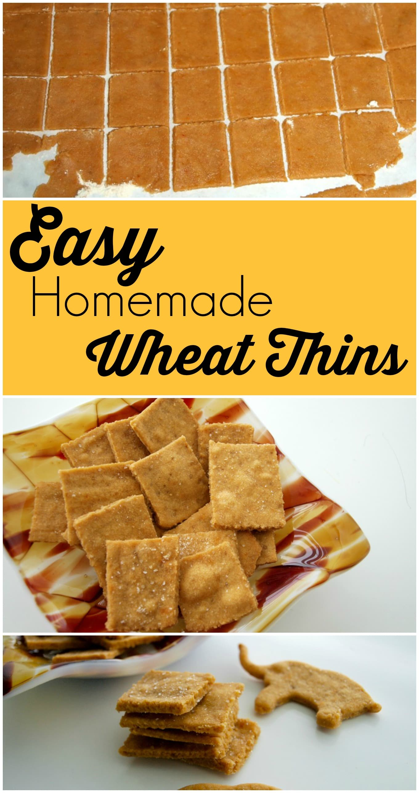 These Easy Homemade Wheat Thin crackers take just a few minutes of ...