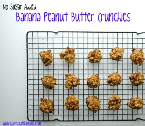 Sugar Free Banana Peanut Butter Cookies