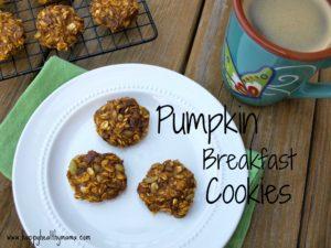 Pumpkin breakfast cookies {dairy-free, gluten-free, nut-free}