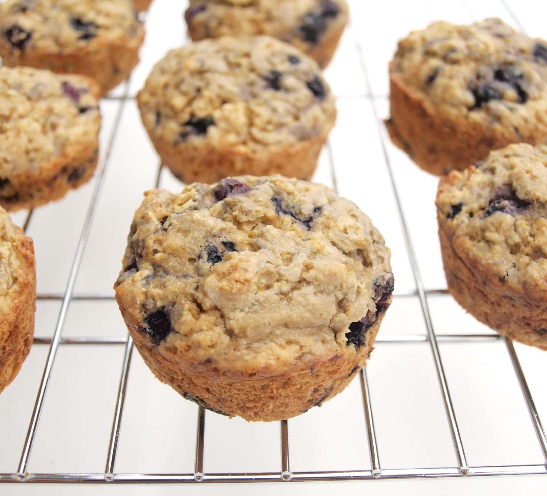 100% whole grain blueberry-lemon muffins