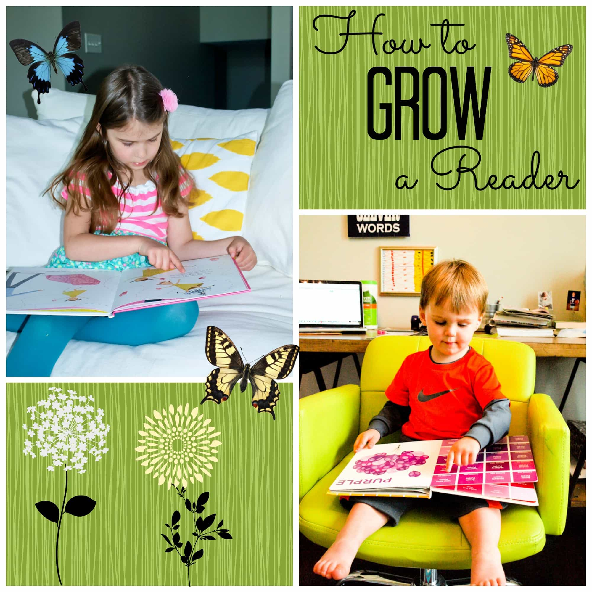 How to Grow a Reader