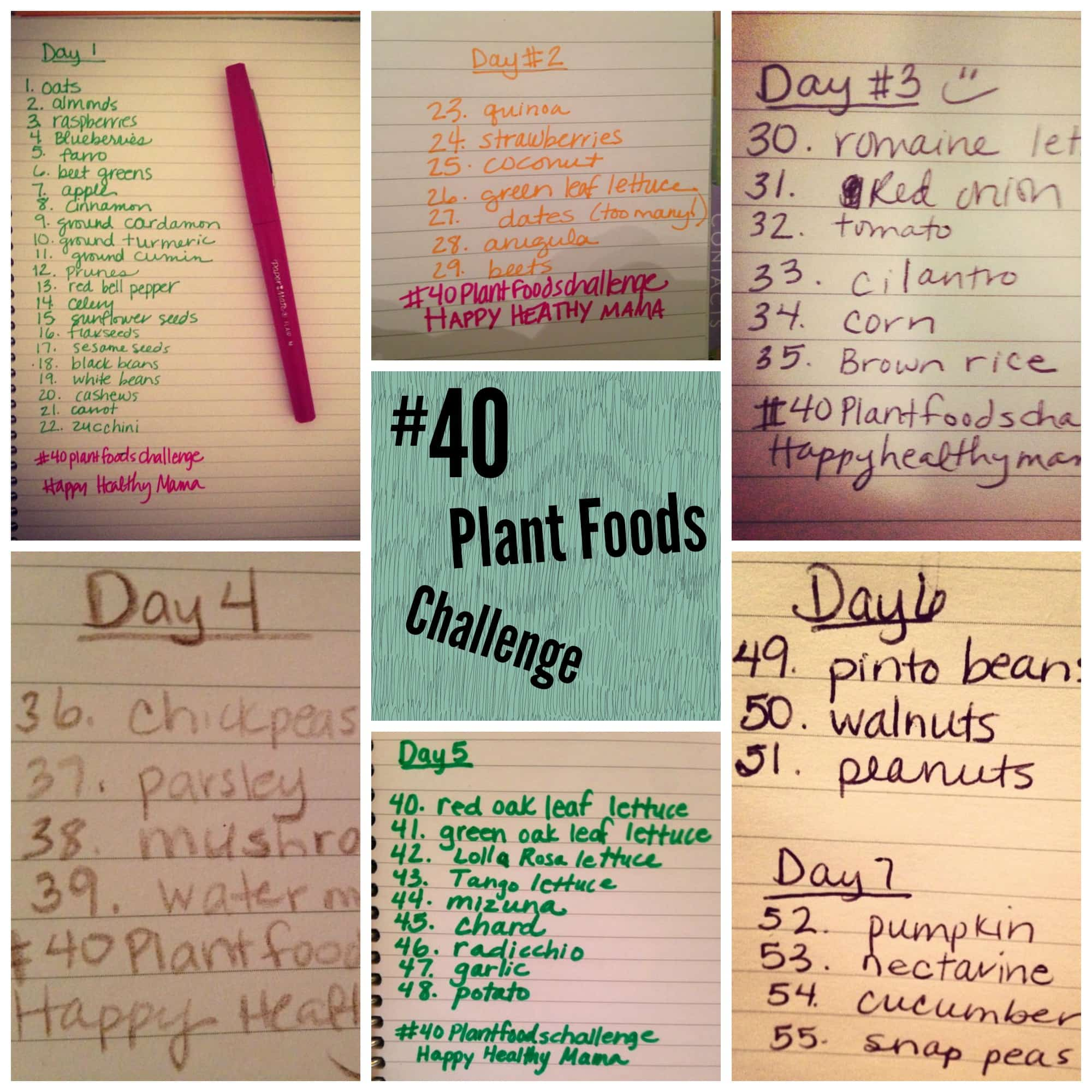 The 40 Plant Foods Challenge Recap