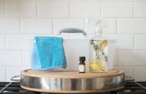 Toxin Free Cleaning Kit from ePantry