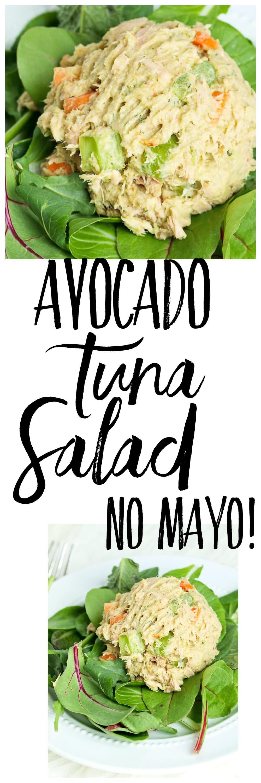 recipe: tuna salad calories no mayo [20]