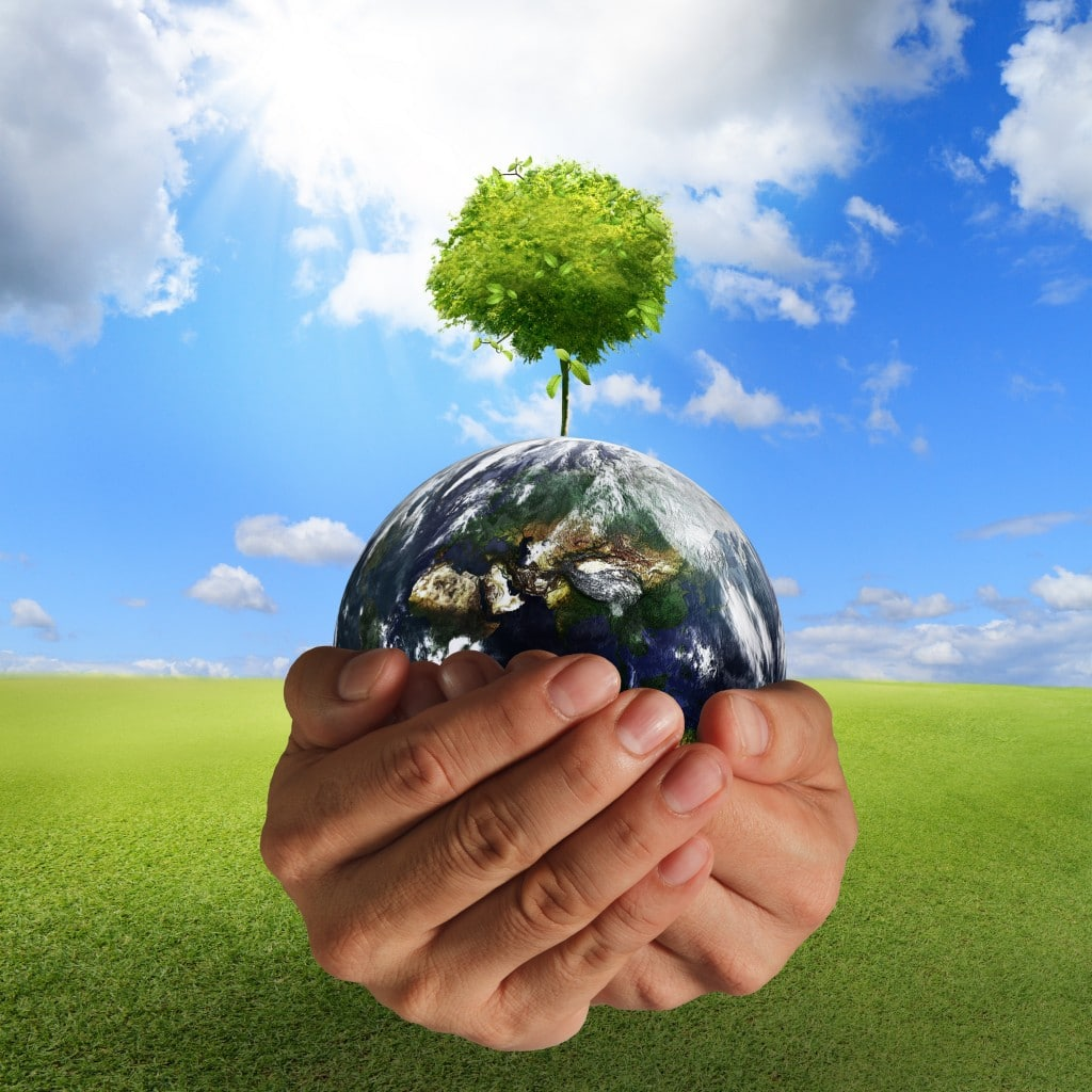 boost-happiness-with-renewable-living