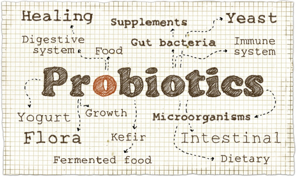 A guide to probiotics