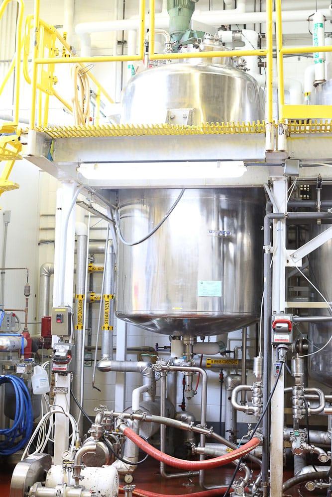 Mega Food manufacturing process