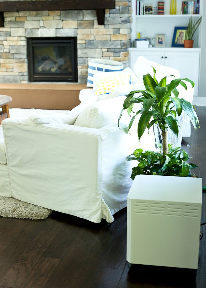 EnvironKlenz mobile air cleaning until use household plants to reduce the indoor air pollution in your home