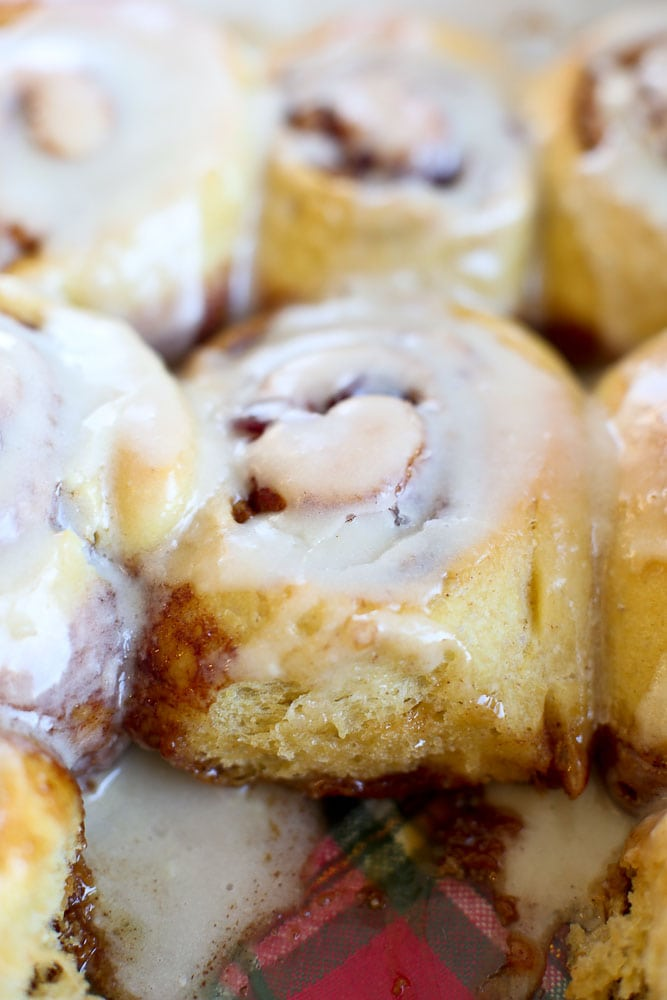 Overnight Cranberry Cinnamon Rolls-close up of the whole pan with a few taken out