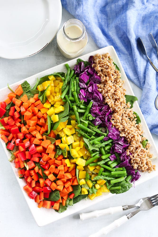 Rainbow Farro Salad recipe overhead shot