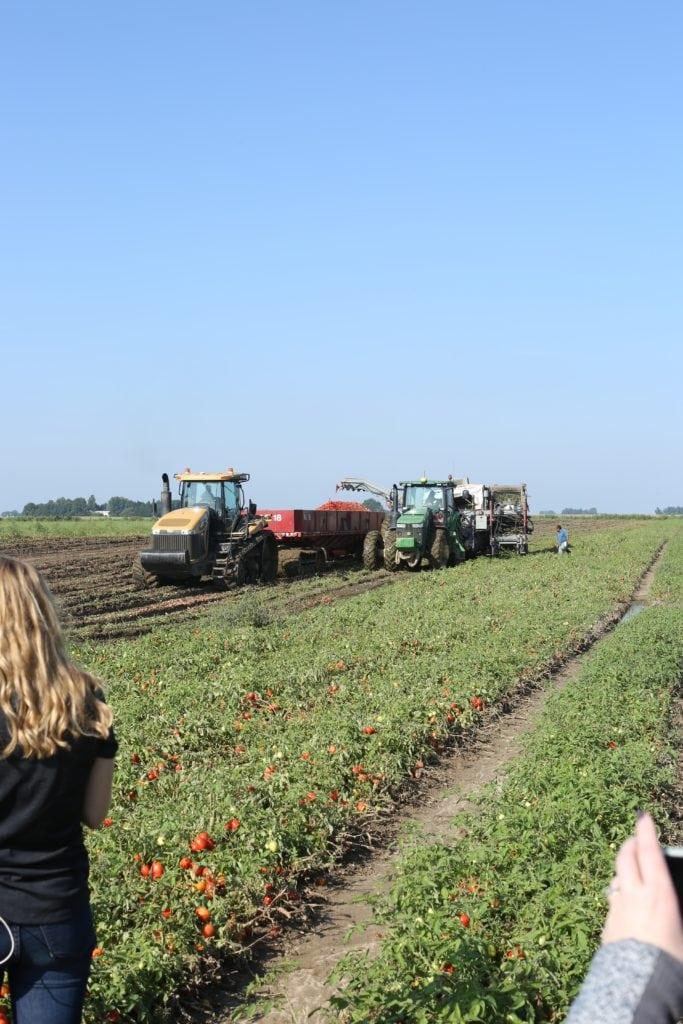 Are Canned Foods Nutritious? tractor at Triple S Smith Farms