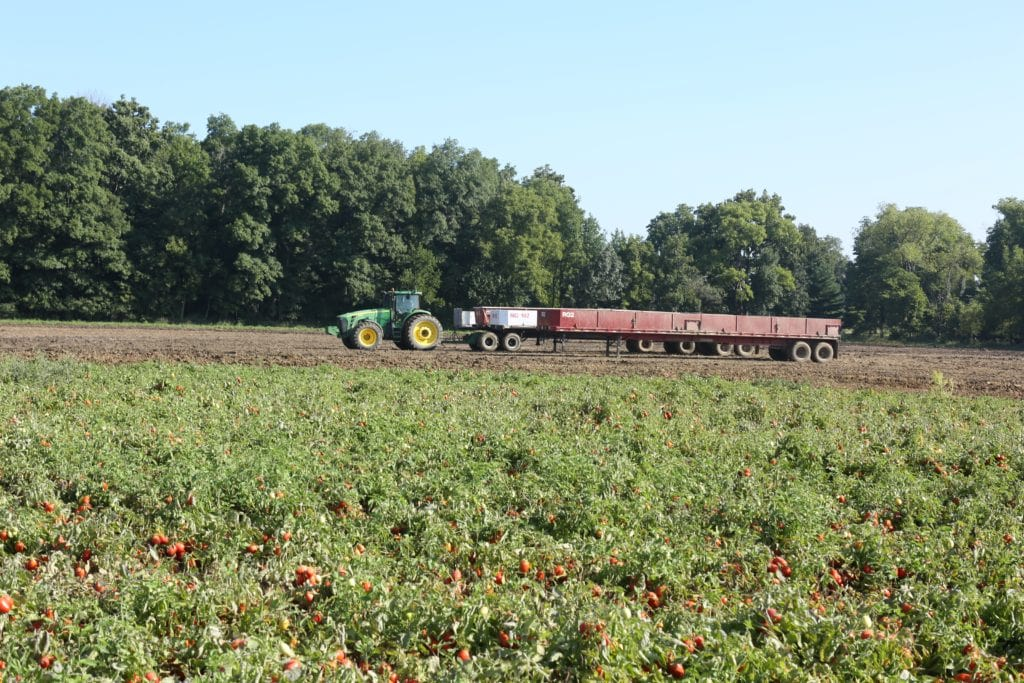 Are Canned Foods Nutritious (at Triple S tomato farm in Indiana)
